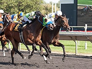 Avanzare won the Washington Park Handicap on Aug. 30.