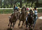 U.S. Wagering, Purses Held Steady in 2013