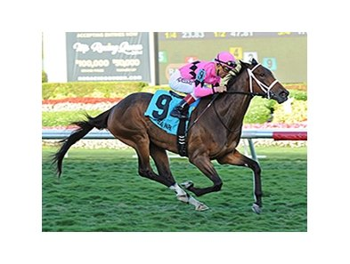Room Service wins the Herecomesthebride Chimes Feb. 2, 2014.