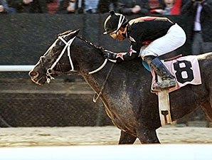 Street Story Best in Sloppy Oaklawn Opener