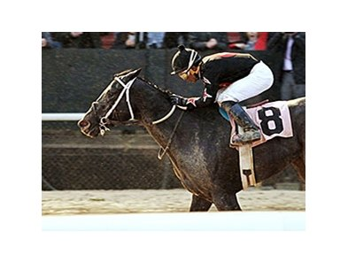 Street Story and Ricardo Santana Jr. take the Dixie Belle Stakes on opening day at Oaklawn.