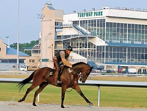 Turfway Bucks Trend; Ontrack Handle Up 13.5%