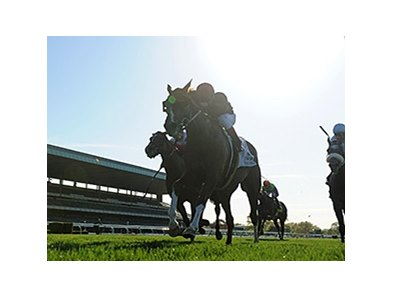 Imagining wins the Man O' War Stakes.