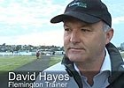 Cox Plate: Trainer David Hayes