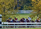 Sporting Art Auction at Keeneland Nov. 19