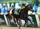 "Palace Malice won the 2013 Belmont Stakes. <br><a target=""blank"" href=""http://photos.bloodhorse.com/TripleCrown/2013-Triple-Crown/Belmont-Stakes-145/29744699_jpqpwR#!i=2562968408&k=TqQX6Hp"">Order This Photo</a>"