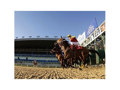 Woodbine Race Course