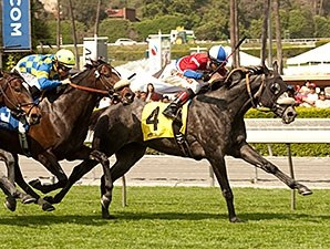 Fire With Fire comes home strong to win the San Luis Rey Stakes.