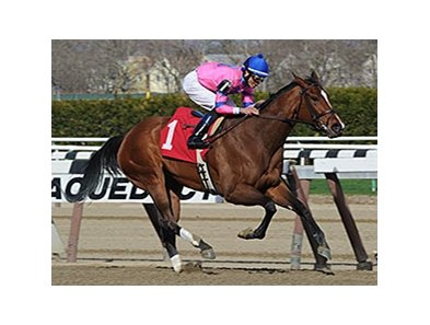 "La Verdad won the 2014 Distaff Handicap. <br><a target=""blank"" href=""http://photos.bloodhorse.com/AtTheRaces-1/At-the-Races-2014/35724761_2vdnSX#!i=3189826263&k=qPKzsmG"">Order This Photo</a>"