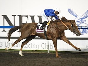 Hunter's Light won the Al Maktoum Challenge-Round 2 in 2013.