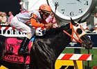 "Ben's Cat who won the Jim McKay Turf Sprint for the third time in four years.<br><a target=""blank"" href=""http://photos.bloodhorse.com/AtTheRaces-1/At-the-Races-2014/i-FSn2QvN"">Order This Photo</a>"