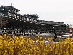 Keeneland Juvenile Sale Grabs Center Stage