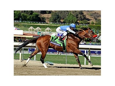 Goldencents won the 2013 Breeders' Cup Dirt Mile. 