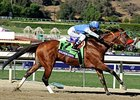 Goldencents Seeks Second Dirt Mile Victory