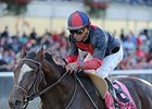 "Tonalist takes on five in the Suburban Handicap.<br><a target=""blank"" href=""http://photos.bloodhorse.com/AtTheRaces-1/At-the-Races-2014/i-Fx4w4Wn"">Order This Photo</a>"