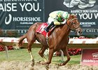 Needmore Flattery Repeats as OH Horse of Year