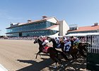Fair Grounds to Withhold Millions from Purses
