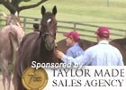 Keeneland Sept Yearling Sales Preview