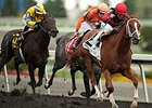 Calgary Cat will try to win his third stakes in a row at the Woodbine in the Vigil Stakes.