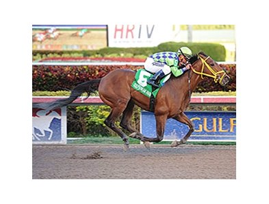 "Wildcat Red<br><a target=""blank"" href=""http://photos.bloodhorse.com/AtTheRaces-1/At-the-Races-2014/35724761_2vdnSX#!i=3053785094&k=Wjd2dCF"">Order This Photo</a>"