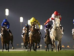 L'Amour de Ma Vie All Heart in Balanchine