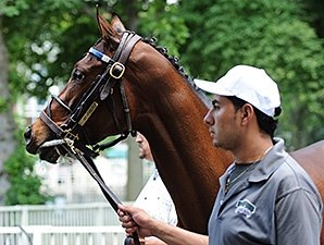Filly Untapable Works Toward Haskell