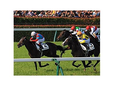 One And Only wins the Japanese Derby.