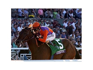 "Beholder <br><a target=""blank"" href=""http://photos.bloodhorse.com/BreedersCup/2013-Breeders-Cup/Distaff/33149827_x5ZZPc#!i=2876557273&k=j9QhGr3"">Order This Photo</a>"