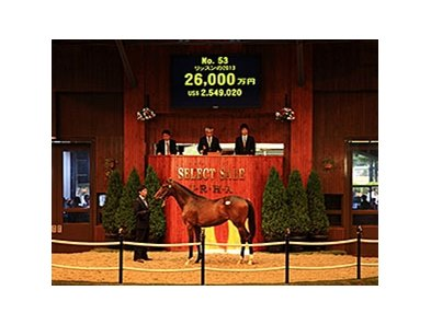 Hip 53 was the JRHA Select Sale topper.