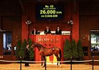 Sheikh Fahad Buys JRHA Yearling Sale-Topper
