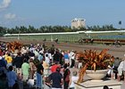 Gulfstream Redevelopment Set for Apr-Nov