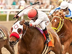 Big Macher Denies Wild Dude in Potrero Grande