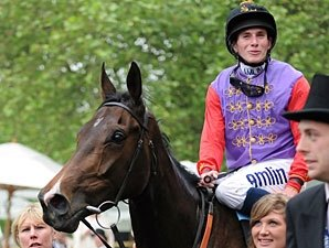 Queen's Horse Tests Positive for Morphine