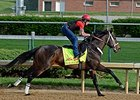 Ride On Curlin jogs at Churchill Downs April 27.