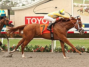 Best Pal winner Skyway returns in the Del Mar Futurity.