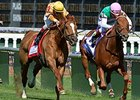 Wise Dan (left) gets his head in front of Seek Again to win the Woodford Reserve Turf Classic Stakes.