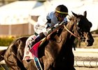 Slim Shadey Shows Up in Red Bank Stakes