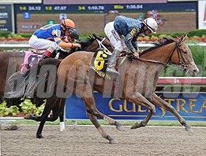 Gamay Noir upsets the Rampart at Gulfstream.