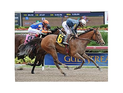 "Gamay Noir upsets the Rampart at Gulfstream.<br><a target=""blank"" href=""http://photos.bloodhorse.com/AtTheRaces-1/At-the-Races-2014/35724761_2vdnSX#!i=3148827368&k=p9L8vJq"">Order This Photo</a>"