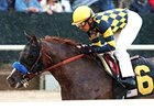 Super Ninety Nine, Den's Legacy: No KY Derby