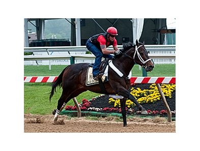 Ride On Curlin breezed four furlongs in :49 3/5 at Pimlico Race Course May 14.