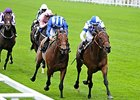"Al Kazeem (right) will stand at the Royal Studs for the 2014 breeding season.<br><a target=""blank"" href=""http://photos.bloodhorse.com/AtTheRaces-1/at-the-races-2013/27257665_QgCqdh#!i=2584605387&k=LH58DH8"">Order This Photo</a>"