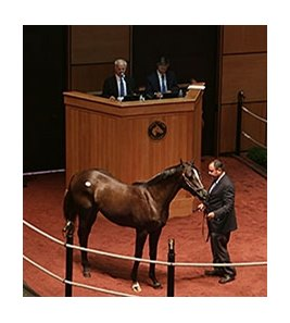 Hip 110, a colt by Unbridled's Song, sold for $400,000 on July 14.