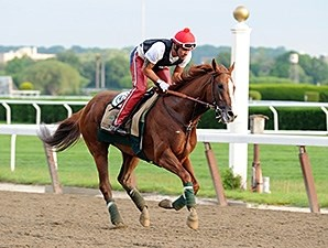 California Chrome jogs at Belmont Park May 26.