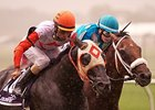 Ben's Cat Prevails in Laurel Dash