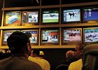 Betting was a topic during National HBPA convention Feb. 4