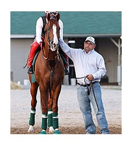 California Chrome prepares to jog May 7 at Churchill Downs.