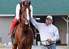 California Chrome Jogs at Churchill Downs