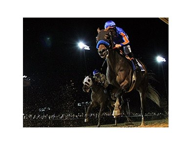 Game On Dude