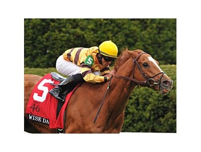 "Wise Dan faces Point of Entry in the Woodford Reserve Turf Classic.<br><a target=""blank"" href=""http://photos.bloodhorse.com/AtTheRaces-1/at-the-races-2013/27257665_QgCqdh#!i=2455124315&k=fpGQXZt"">Order This Photo</a>"